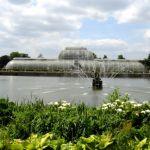 kew gardens_OliviaQuantoBasta
