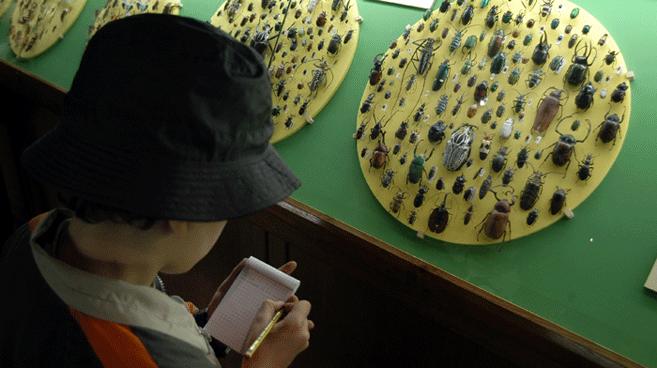 In visita al museo di scienze naturali di Verona
